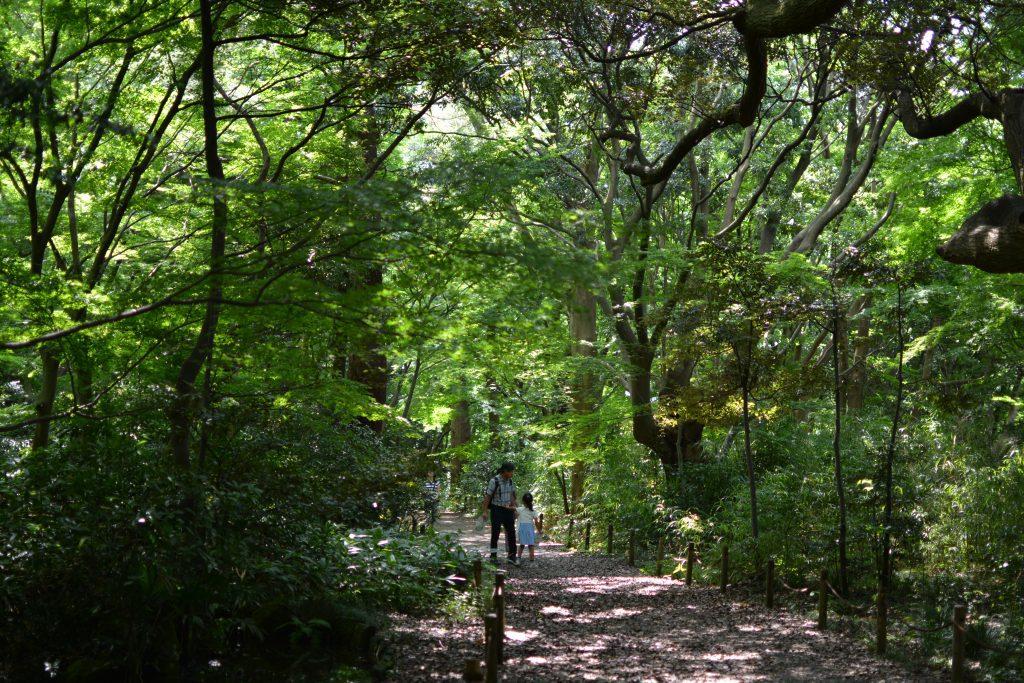 kanazawa : immersi nella natura