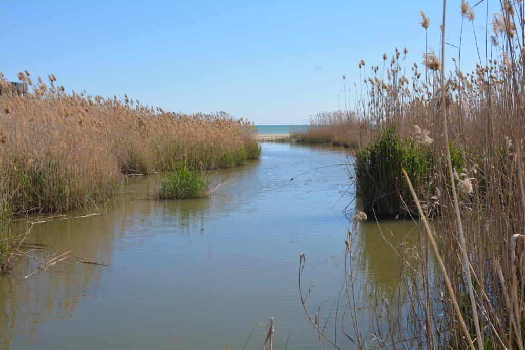 Il fiume Llobregat sfocia nel mare