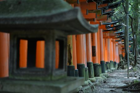 il tempio di Fushimi Inari